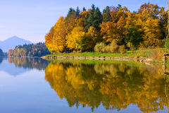 Autumn Reflection Royalty Free Stock Image