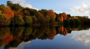 Autumn Reflection arkivbilder