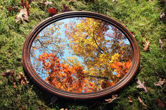 Autumn Reflection. Reflection of colorful trees in a mirror Stock Images