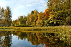 Autumn Reflection Stock Photography