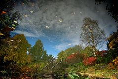 Autumn in reflection stock image