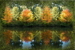 Autumn Reflection Stockfotografie