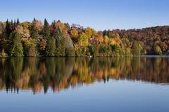 Autumn Reflection Immagine Stock