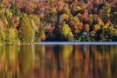 Autumn Reflection Fotografie Stock