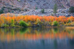 Free Autumn Reflection Stock Image - 61179181