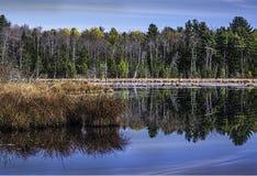 Autumn Reflection Lizenzfreie Stockfotografie