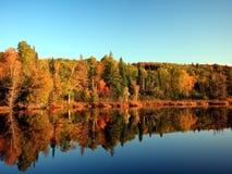Autumn reflection Stock Photos
