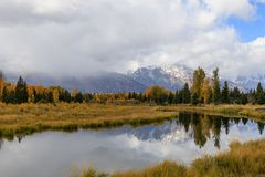 Autumn Reflection cênico no Tetons imagens de stock royalty free