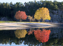 Autumn reflection. Colorful opposite reflection in water Royalty Free Stock Photos