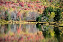 Autumn Reflection. Colorful autumn trees and foliage reflected on the calm surface of a mountain lake stock photo