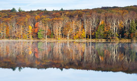 Autumn reflection. Autumn colors and their reflection in Catskill State Park, NY Stock Photos