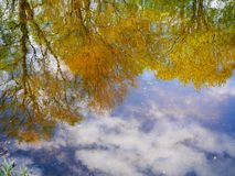 Autumn reflection of the green and yellow trees and blue sky in the lake water. In soft lights stock photography