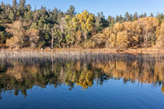 Autumn Reflection in Lake Royalty Free Stock Photo