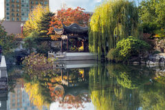 Autumn reflection in Lan Su Chinese Garden Pond Royalty Free Stock Photography