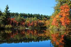 Autumn Reflection. A mirror reflection with beautiful Autumn leaves Royalty Free Stock Photography