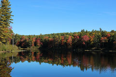 Autumn Reflection. Mirror reflection on the water with beautiful Autumn trees royalty free stock photos