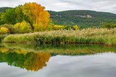 Autumn reflection over lake Royalty Free Stock Photos