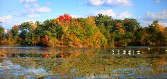 Autumn reflection Royalty Free Stock Photography