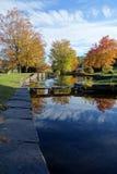 Autumn Reflection Pond Imagens de Stock