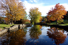 Autumn Reflection Pond Trio Stock Photos