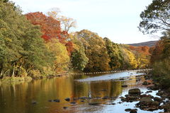 Autumn reflection on the river. Royalty Free Stock Images