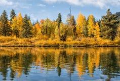 Autumn Reflection Royalty Free Stock Photos