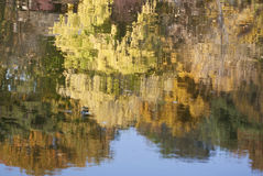 Autumn reflection - RAW format Royalty Free Stock Photo