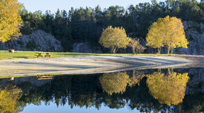 Autumn reflection. Trees reflected in water, Autumn in Norway Stock Image