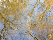 Autumn reflection of trees and sky in curled water Stock Photography