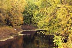 Autumn Reflections Fotografie Stock Libere da Diritti