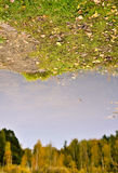 Autumn reflections. Reflctions of an autumn forest in the park Stock Image