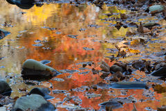 Autumn reflections Royalty Free Stock Images
