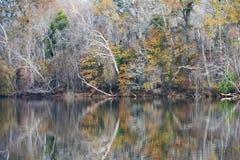 Autumn Reflections Royalty Free Stock Photos
