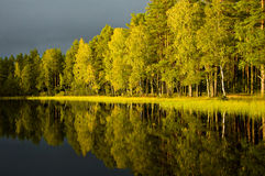 Autumn reflections. Remote lake at early autumn with dark sky, reflections in water and trees lightened by late afternoon sun Stock Photography