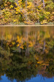 Autumn Reflections Fotografia Stock