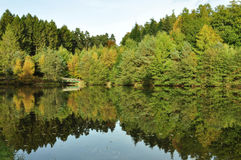 Autumn Reflections Royalty-vrije Stock Foto