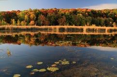 Autumn Reflections Fotografía de archivo libre de regalías