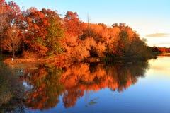 Autumn Reflections imagens de stock royalty free