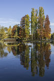 Autumn Reflections. A beautiful trees reflection at Titan Park, Bucharest stock photos