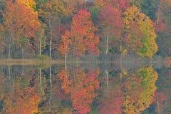 Autumn Reflections Deep Lake Stock Image