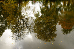 Autumn reflections, Gothenburg Sweden. Reflection of the autumn trees in the canal of Gothenburg Sweden stock image