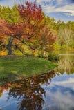 Autumn Reflections sul fiume Fotografia Stock Libera da Diritti