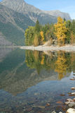 Autumn reflections, trees, Lake McDonald, Royalty Free Stock Photography