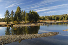 Autumn reflections at Tuolumne River in Yosemite Royalty Free Stock Image