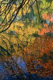 Autumn reflections in the water Stock Photo