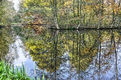 Autumn reflections in Woerden. Trees in various autumn colors reflecting in a pond in a public park in the old city of Woerden, The Netherlands royalty free stock photography