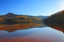 Autumn in the reflective water. In Transylvania Stock Photography