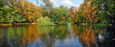 Autumn reflexions panorama Stock Images