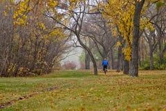 Autumn in Regina Royalty Free Stock Photo