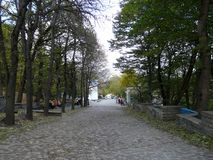 The resort park in the Caucasus stock image